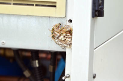 Vosí hnízdo v útrobách zařízení